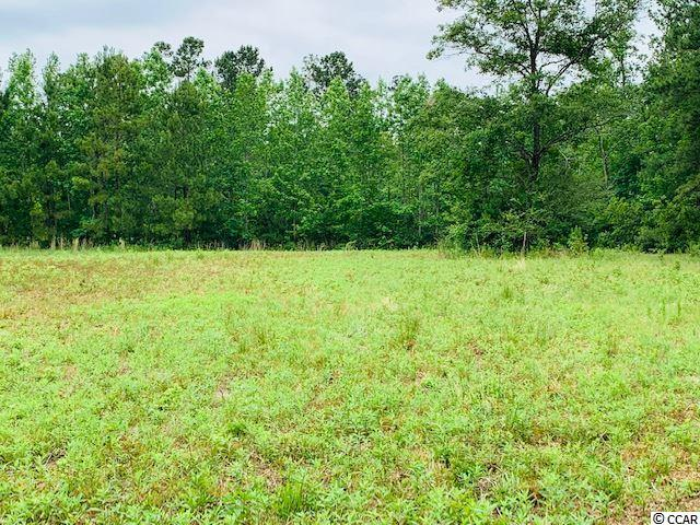 Tract A Red Bluff Rd., Loris, SC 29569 (MLS #1911450) :: The Hoffman Group