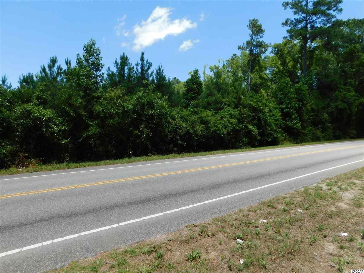 TBD Tract B Old Reaves Ferry Rd. - Photo 1
