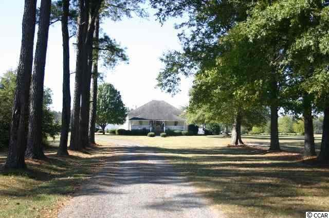 3255 S Pamplico Hwy., Pamplico, SC 29583 (MLS #1913720) :: Garden City Realty, Inc.