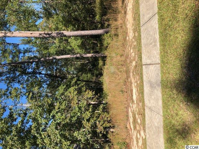 lot 6 Chambelin NE Chamberlin Rd., Myrtle Beach, SC 29588 (MLS #1913809) :: Sloan Realty Group
