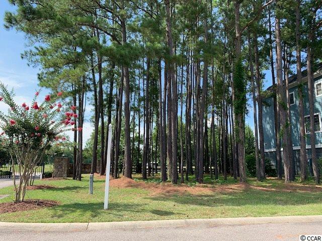 215 Harbor Oaks Dr., Myrtle Beach, SC 29588 (MLS #1914181) :: SC Beach Real Estate