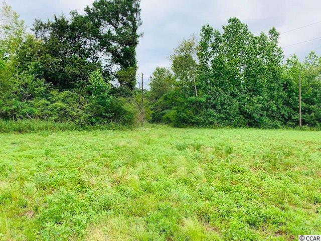 Tract 3 Red Bluff Rd., Loris, SC 29569 (MLS #1914716) :: The Hoffman Group