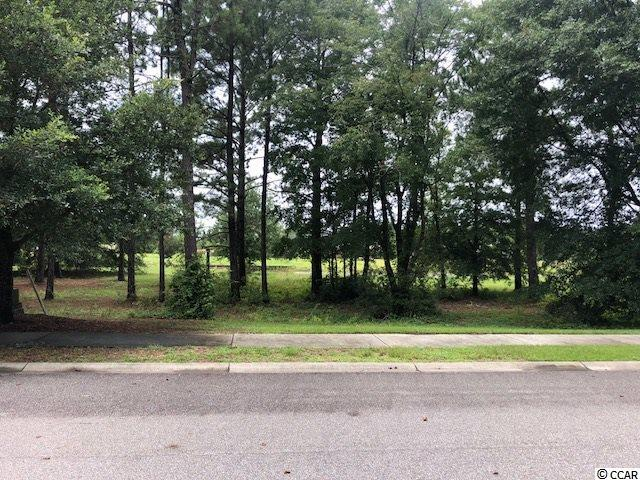 1463 Whooping Crane Dr. - Photo 1