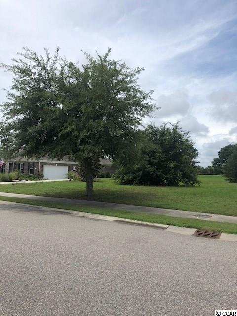 1012 Whooping Crane Dr. - Photo 1