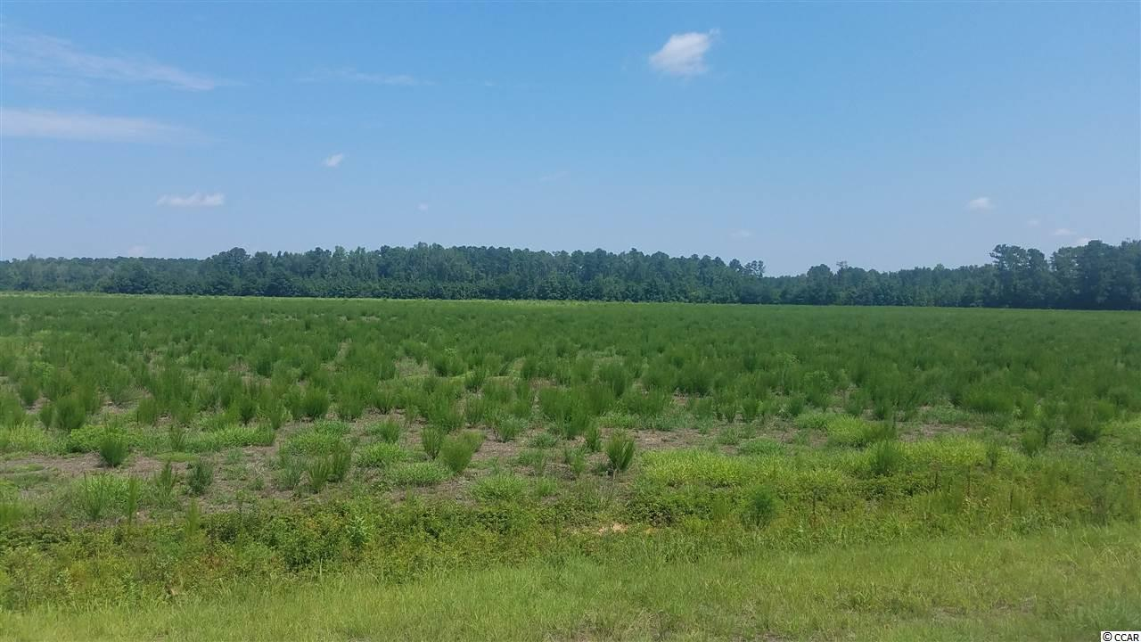 24.47 Acres Fowler Rd. - Photo 1