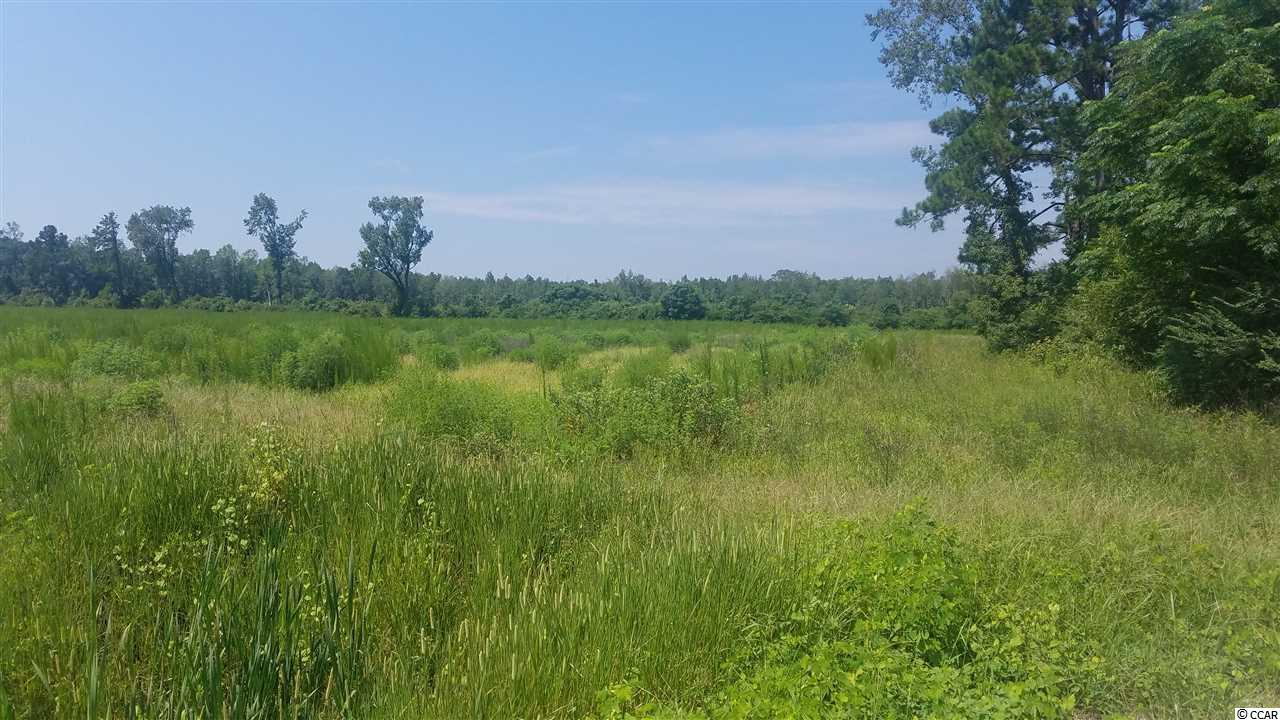 47.43 Acres Fowler Rd. - Photo 1