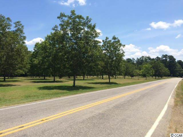 6 acres Highway 701 South, Conway, SC 29527 (MLS #1919922) :: The Lachicotte Company
