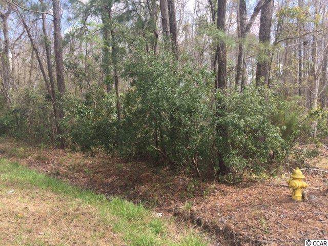 TBD Horseshoe Rd., Little River, SC 29566 (MLS #1920042) :: The Litchfield Company