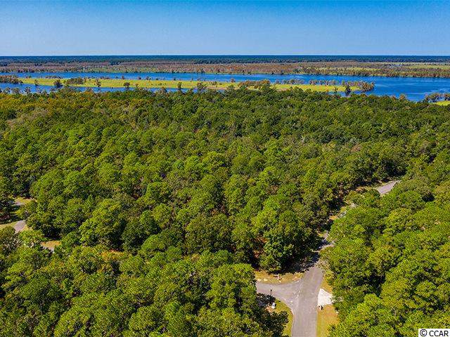 46 Deer Meadow Ln., Pawleys Island, SC 29585 (MLS #1920178) :: The Litchfield Company