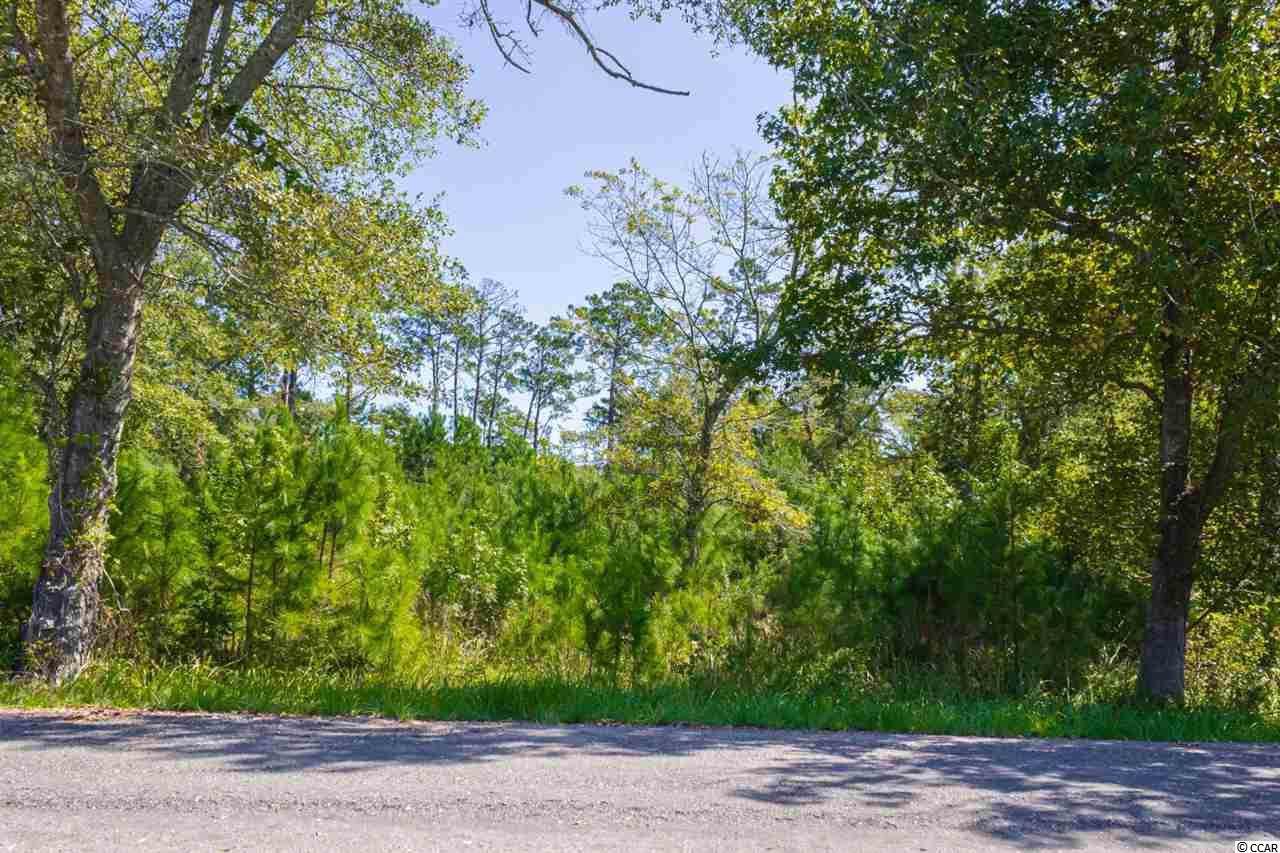 8863 Henrietta Bluff Rd. - Photo 1