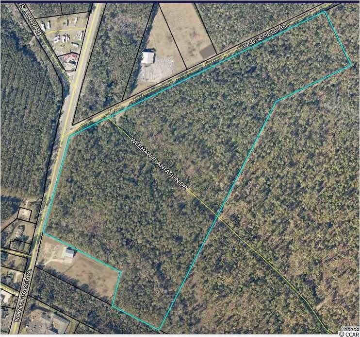 16 Acres Weehaw Plantation Dr. - Photo 1