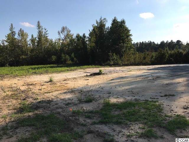 Lot 3-A Highway 813 - Photo 1