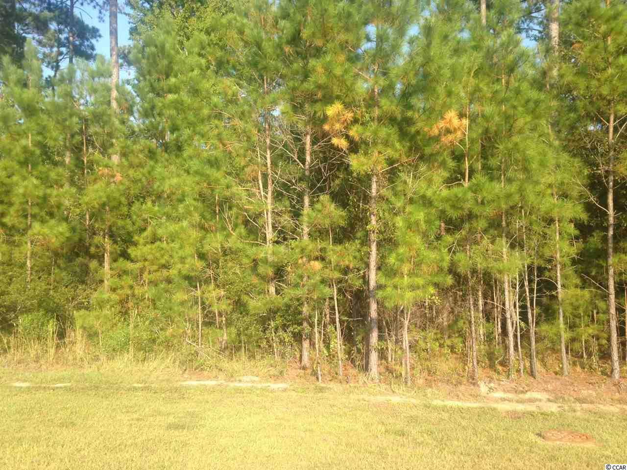 0000 Prince Creek Pkwy. - Photo 1