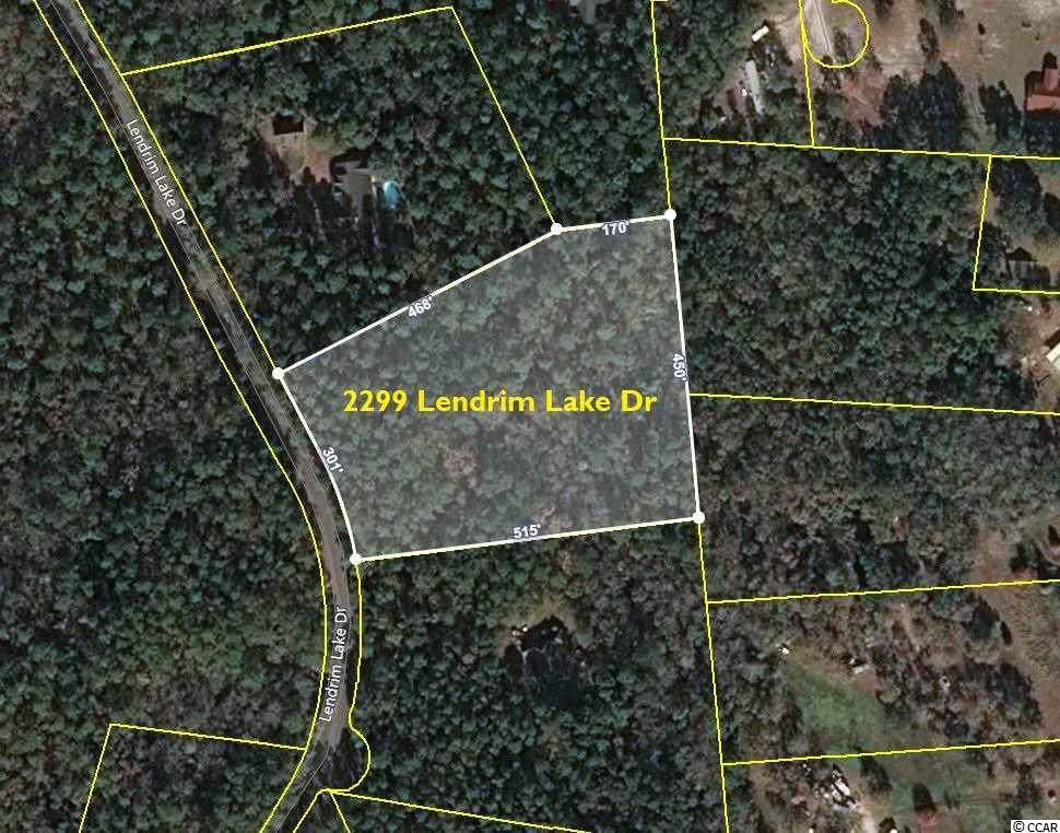 2299 Lendrim Lake Dr. - Photo 1