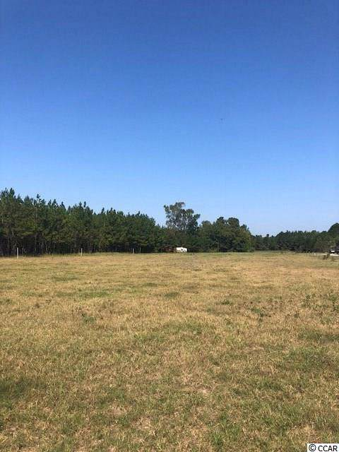TBD Pee Dee Hwy. N, Galivants Ferry, SC 29544 (MLS #1921546) :: The Hoffman Group