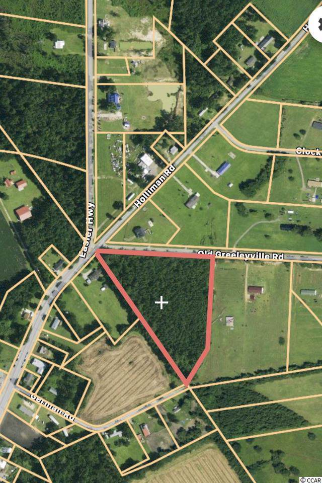 000 Holliman Rd., Greeleyville, SC 29056 (MLS #1922656) :: Right Find Homes