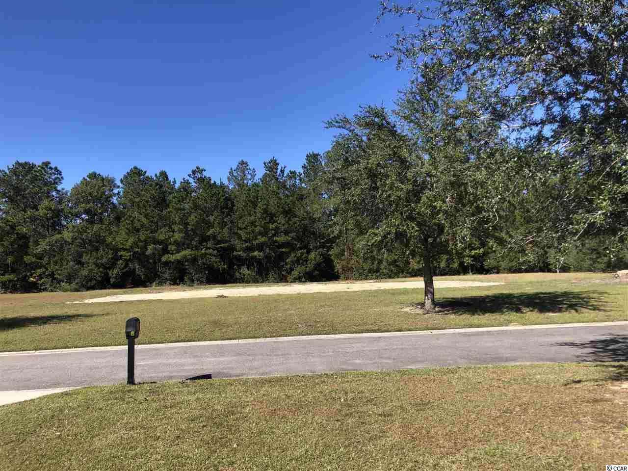 Lot 7 Woodside Trail - Photo 1