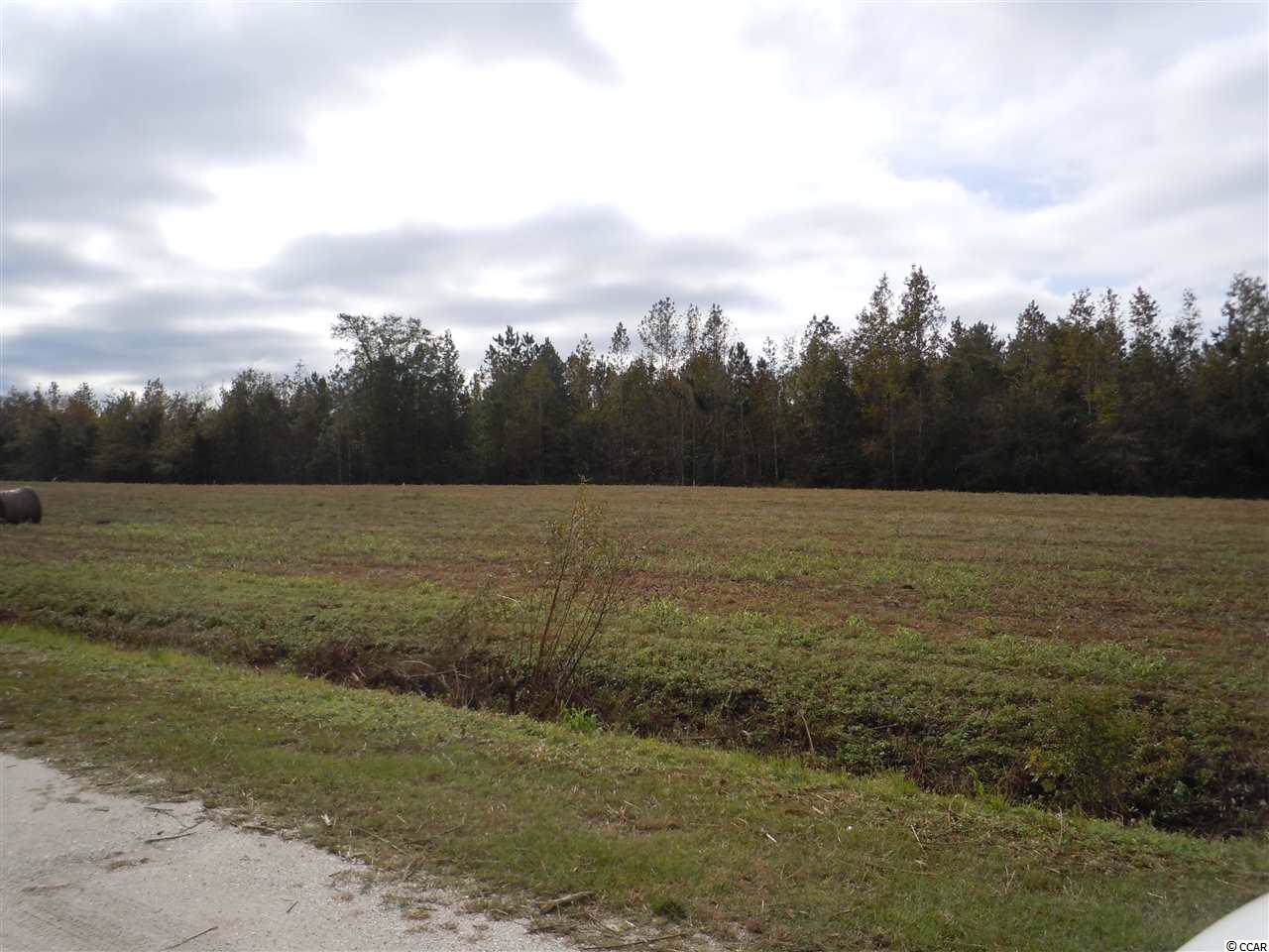 TBD-Lot A G & B Estates Ave. - Photo 1
