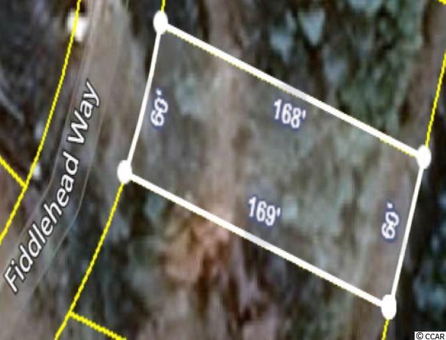 1267 Fiddlehead Way, Myrtle Beach, SC 29579 (MLS #1925470) :: SC Beach Real Estate