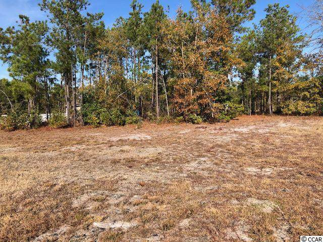 Lot 4 Alpharetta Ct., Conway, SC 29526 (MLS #1925968) :: SC Beach Real Estate