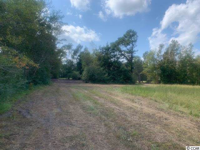 Tract 3 Red Bluff Rd. - Photo 1