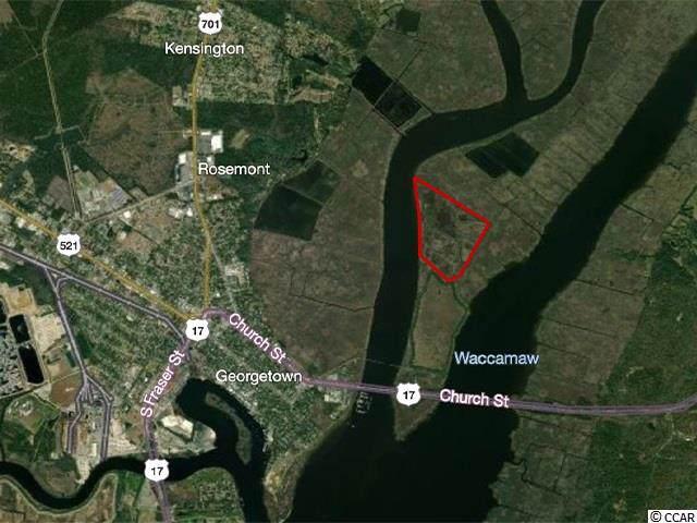 000 Pee Dee River, Georgetown, SC 29440 (MLS #2000827) :: The Trembley Group | Keller Williams