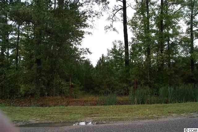 TBD Coalition Dr., Myrtle Beach, SC 29588 (MLS #2001218) :: The Hoffman Group