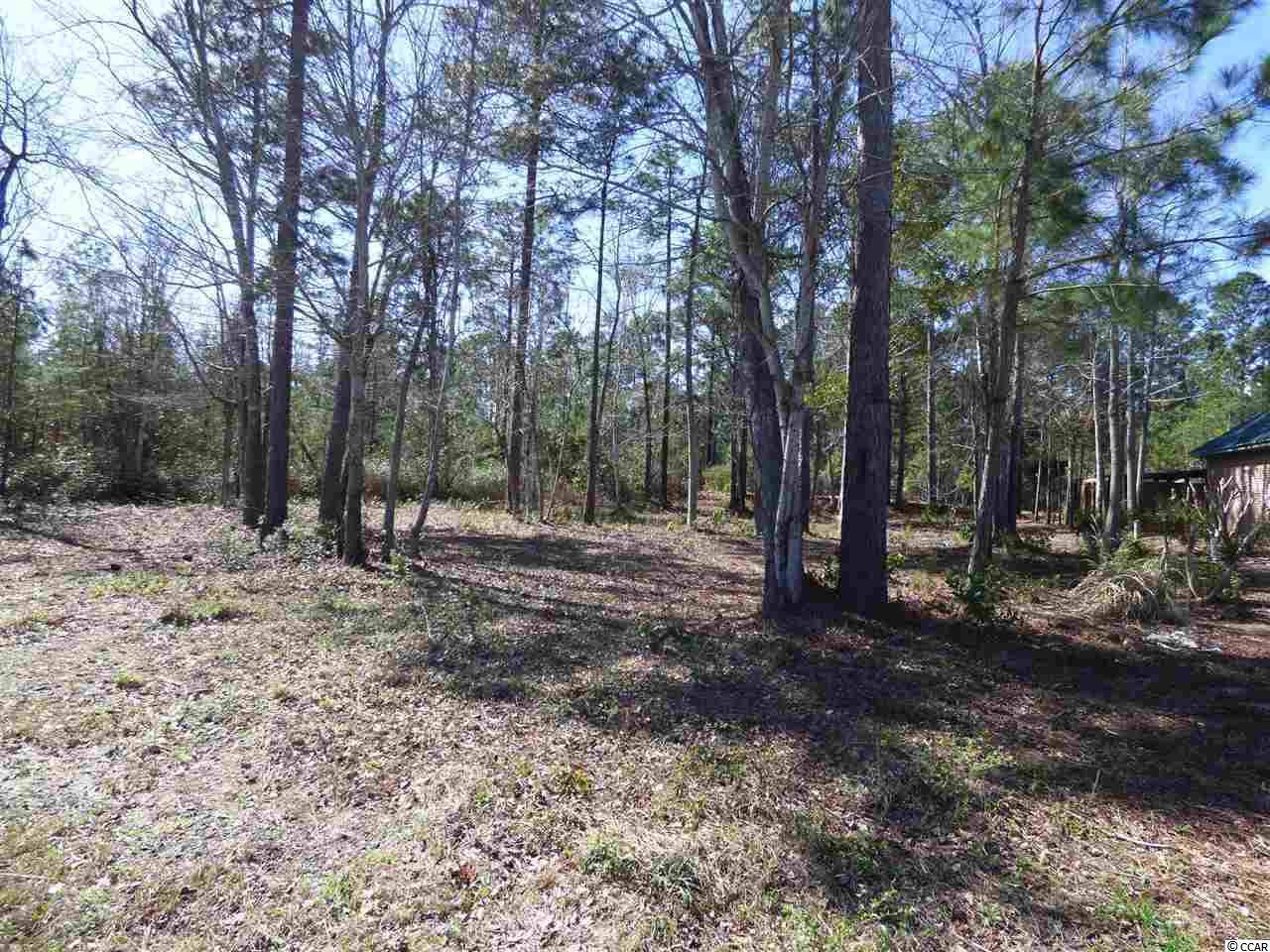 Lot 15 New Castle Loop - Photo 1
