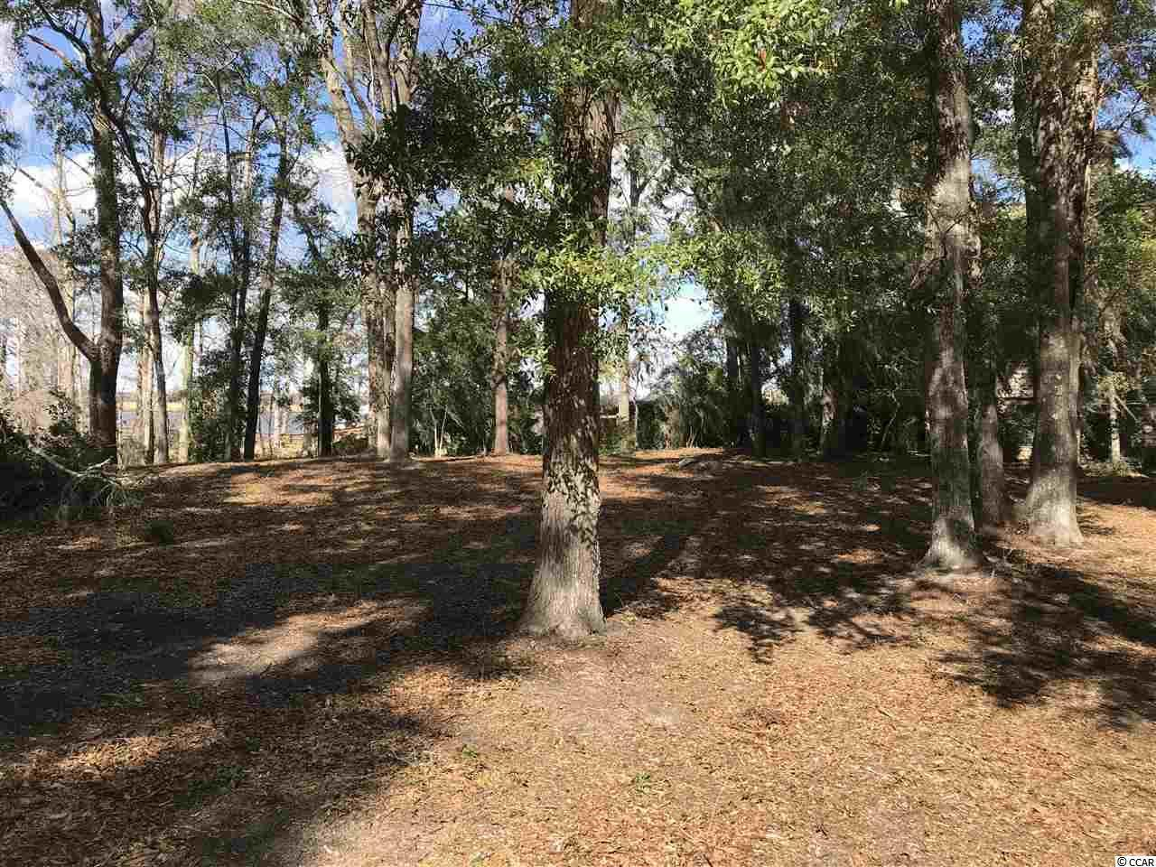 Lot 17 & 18 Emerson Loop - Photo 1