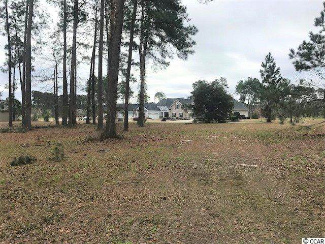 1806 Wood Stork Dr., Conway, SC 29526 (MLS #2003349) :: SC Beach Real Estate