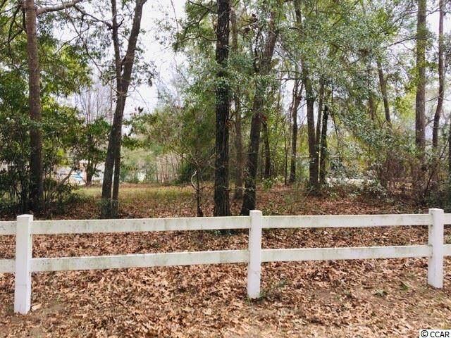Mallard Circle, Georgetown, SC 29440 (MLS #2003457) :: Jerry Pinkas Real Estate Experts, Inc