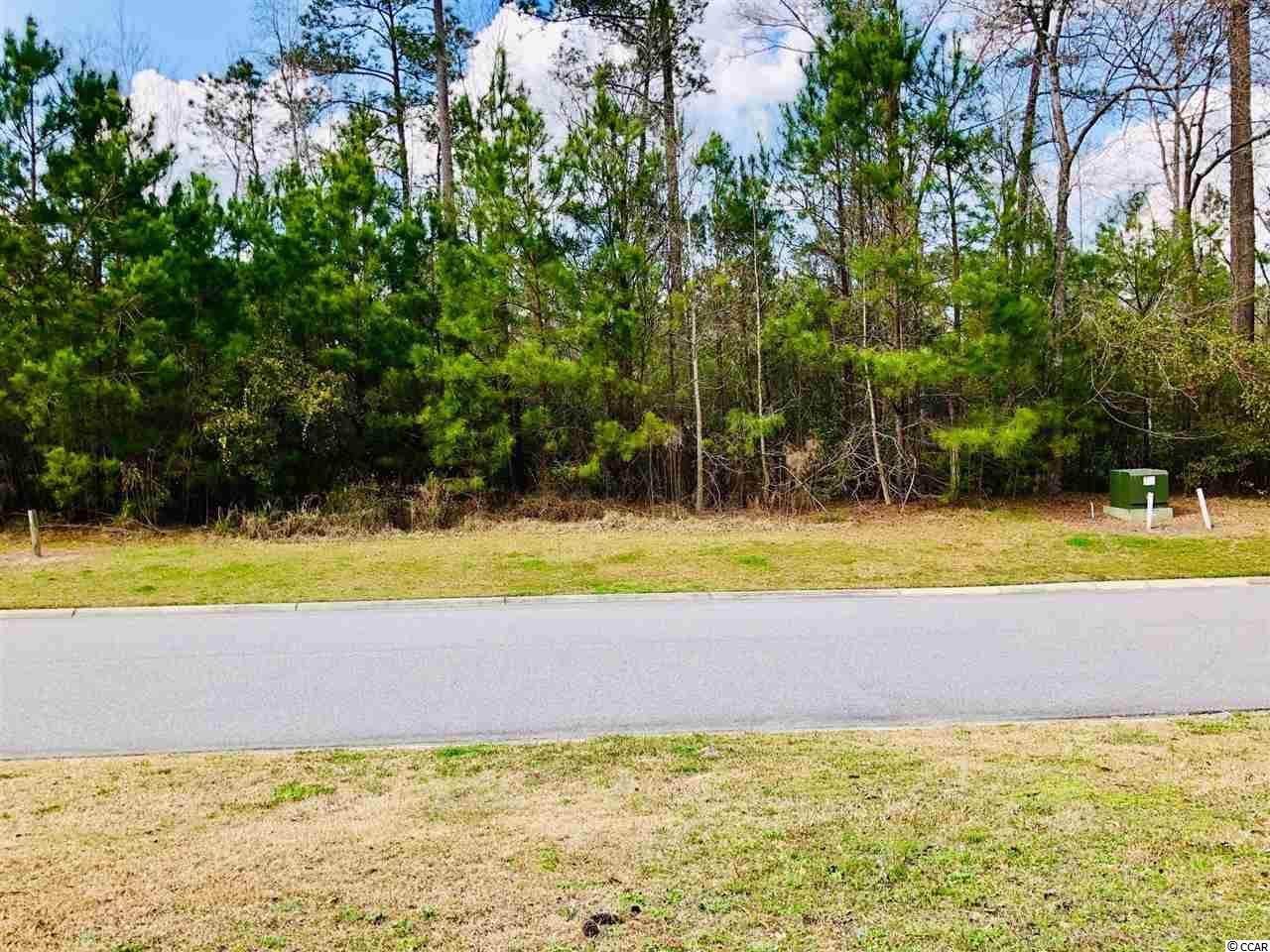 Lot 57 Timber Creek Dr. - Photo 1