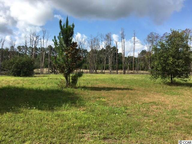 Lot 512 Clamour Ct., Conway, SC 29526 (MLS #2008890) :: The Litchfield Company