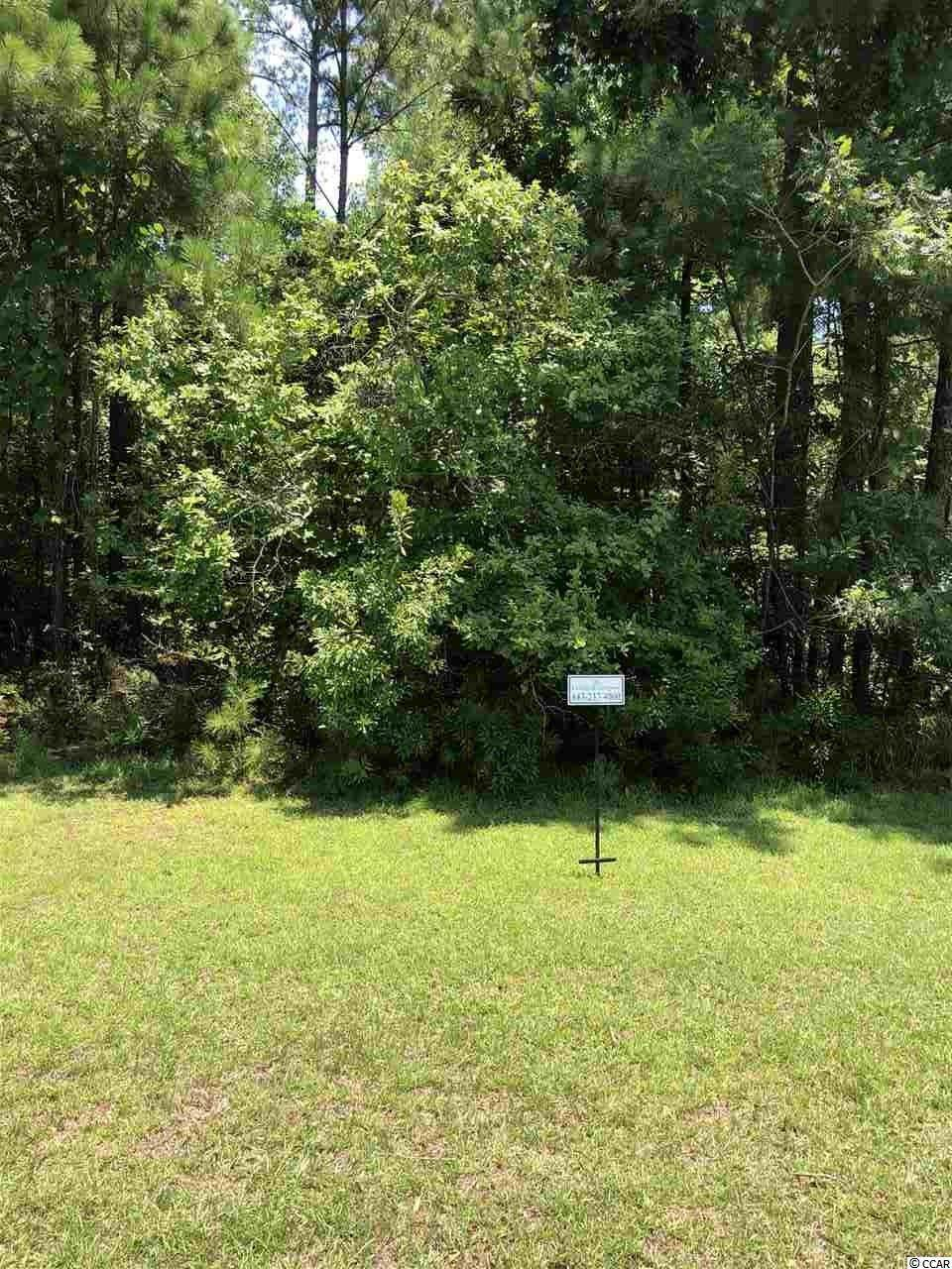 Lot 28 Low Country Loop - Photo 1