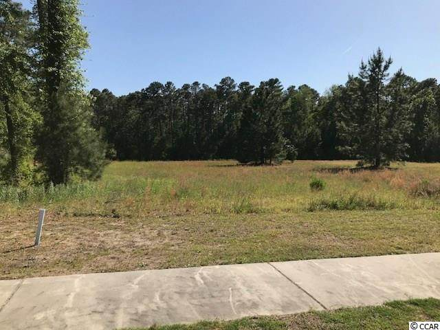 1017 Spoonbill Dr., Conway, SC 29526 (MLS #2010915) :: The Greg Sisson Team with RE/MAX First Choice
