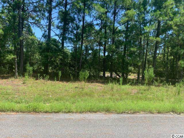 3300 Mount Pisgah Cemetary Rd., Conway, SC 29526 (MLS #2016461) :: The Hoffman Group