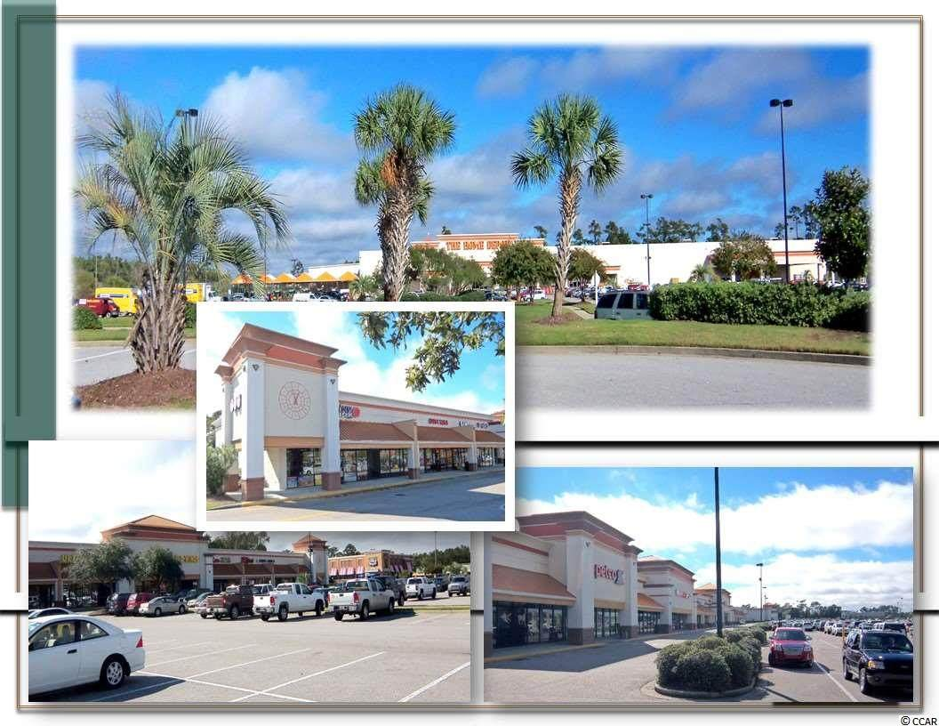 550 Highway 17 Business - Photo 1