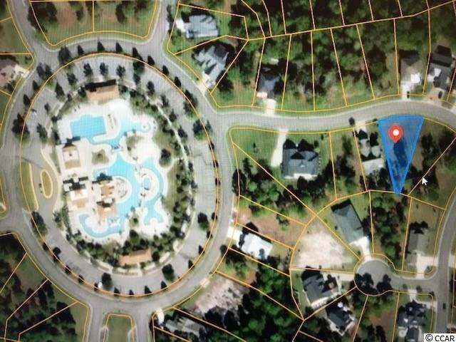 2213 Yellow Morel Way, Myrtle Beach, SC 29579 (MLS #2020312) :: The Litchfield Company