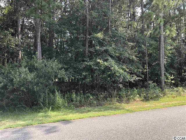 1244 Francis Parker Rd., Georgetown, SC 29440 (MLS #2020646) :: Jerry Pinkas Real Estate Experts, Inc