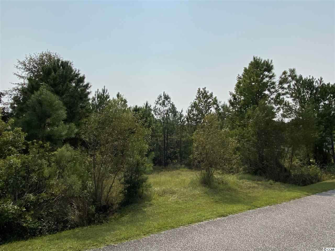 3012 Holly Berry Ct. - Photo 1