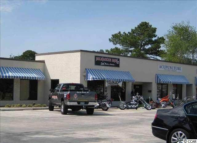 1510 Highway 17 Business North - Photo 1