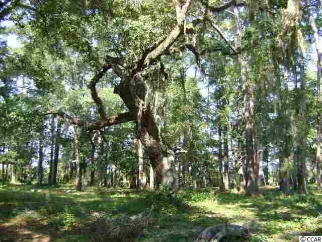 Lot 11 Cabiniss Ln., Pawleys Island, SC 29585 (MLS #2024829) :: The Lachicotte Company