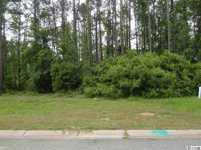 133 Black Harbor Dr., Conway, SC 29526 (MLS #2024913) :: Duncan Group Properties