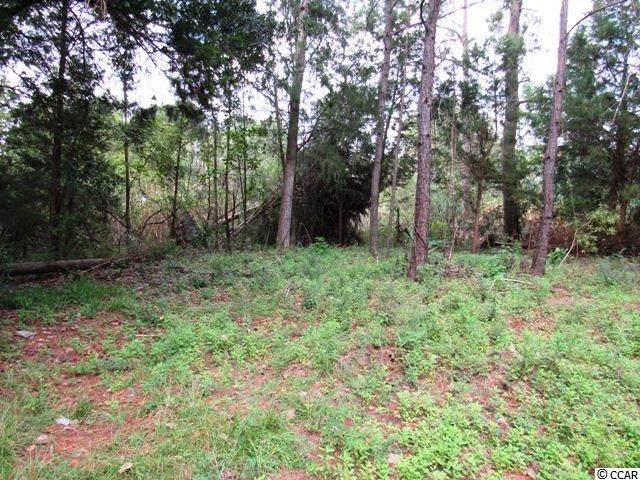 TBD Martin St., Georgetown, SC 29440 (MLS #2025228) :: Welcome Home Realty