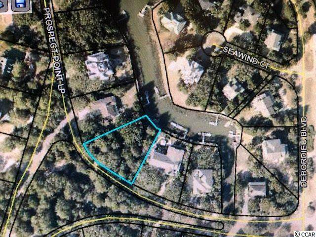 Prospect Point Loop, Georgetown, SC 29440 (MLS #2026378) :: The Lachicotte Company