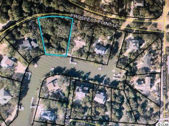 Prospect Point Loop, Georgetown, SC 29440 (MLS #2026380) :: The Lachicotte Company