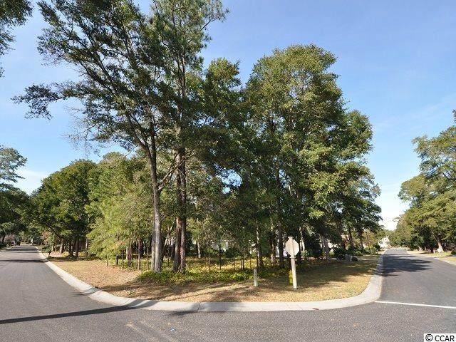 5029 Buck Bluff Dr., North Myrtle Beach, SC 29582 (MLS #2026458) :: Right Find Homes