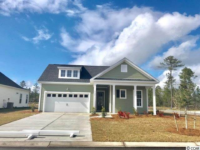 227 Yellow Rail St., Murrells Inlet, SC 29576 (MLS #2101026) :: The Lachicotte Company