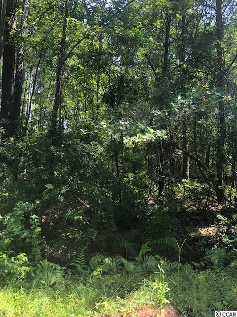 TBD Bossie Ln., Georgetown, SC 29440 (MLS #2104494) :: James W. Smith Real Estate Co.