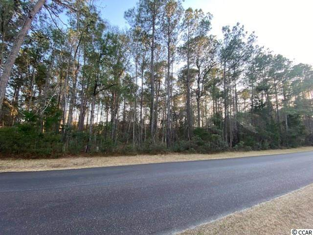 320 Wallace Pate Dr., Georgetown, SC 29440 (MLS #2105310) :: The Lachicotte Company